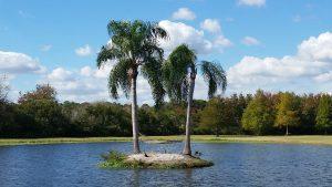 Florida Style Living